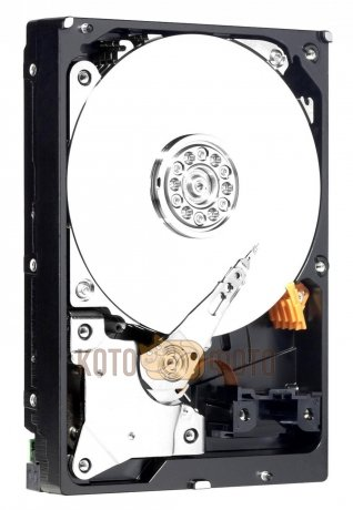 Жесткий диск WD Original SATA-III 500Gb WD5000AZRZ Blue (5400rpm) 64Mb 3.5