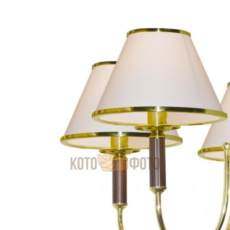Люстра Arte Lamp CATRIN A3545LM-8GO