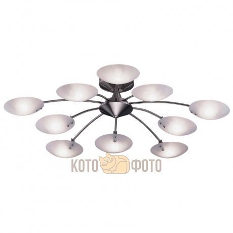 Люстра Odeon Light KERA 1376/10