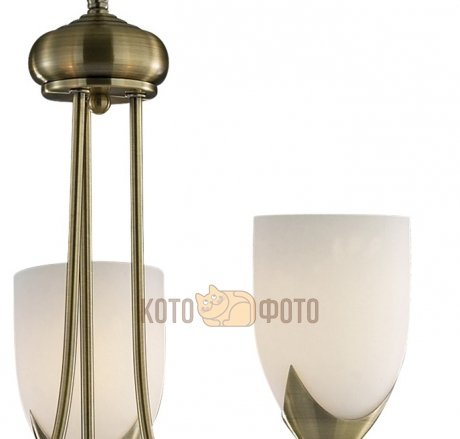 Люстра Odeon Light RISTO 2079/3