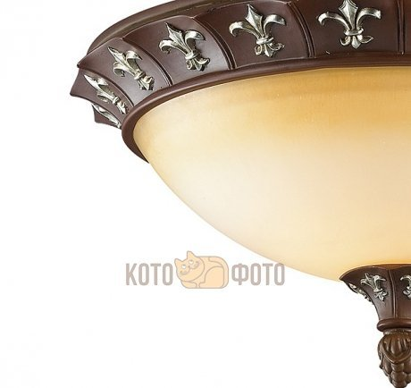 Люстра Odeon Light RIDERA 2784/3