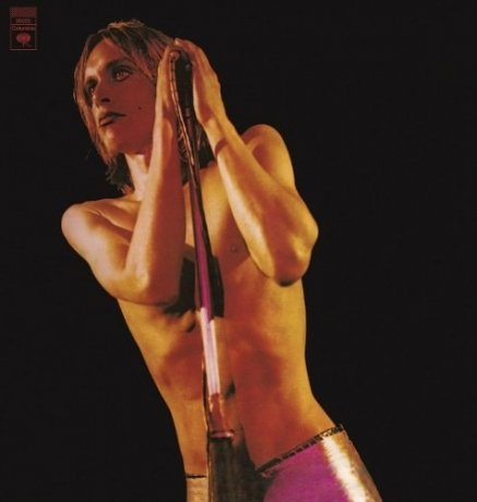 Виниловая Пластинка Pop, Iggy / Stooges, The Raw Power mohamad zakaria the role and function of effective communication