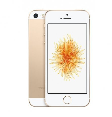 Смартфон Apple iPhone SE 16GB Gold (MLXM2RU;A)