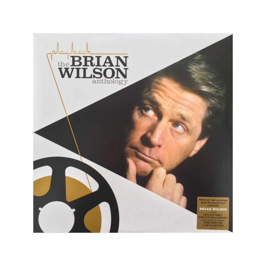 Виниловая пластинка Wilson, Brian, The Brian Wilson Anthology