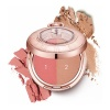 Румяна Labiotte Momentique Time Blusher 10 PM 6,5 г