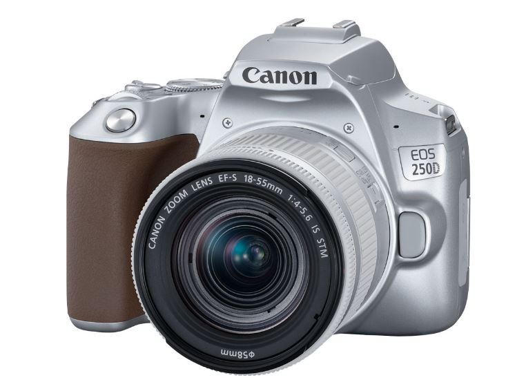 Зеркальный фотоаппарат Canon EOS 250D kit 18-55 IS STM Silver